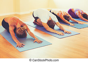 People Relaxing and Doing Yoga - Yoga Class, Group of People...