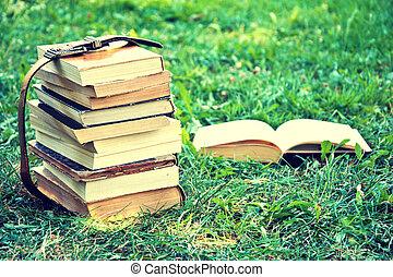 概念, 学校, 教育, 本, 背中