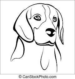 Beagle - Vector illustration - Beagle head on a white...