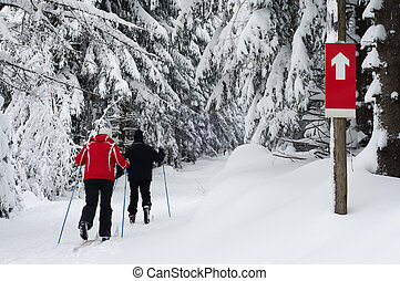 Older Couple Practicing Cross Contry Skiing
