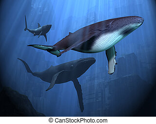 OCEAN RUINS - Two Humpback whales and a shark swim among...