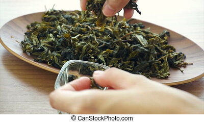 hand setting dried green tea leaves