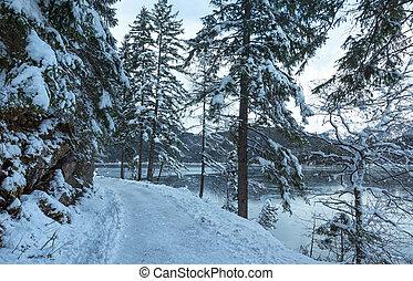 Eibsee lake winter view - Eibsee lake winter view, Bavaria,...