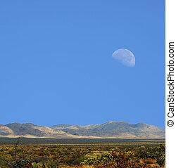 Sonora Desert moon - Moon rising Sonora desert in central...