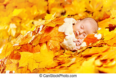 Autumn Baby Sleeping, Newborn Kid Fall Yellow Leaves, Asleep...