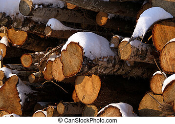 Wood For Energy
