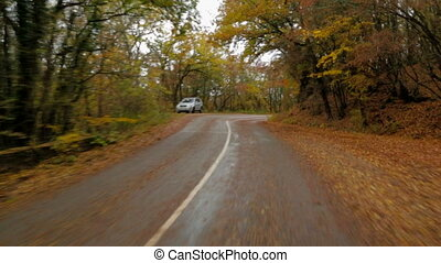 Car Moving In Autumn Forest Along Winding Road - Shot from...