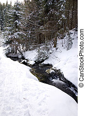 mountain stream in winter landscape with snow