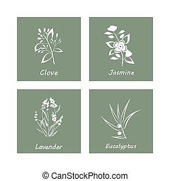 Collection of Herbs . Labels for Essential Oils and Natural...