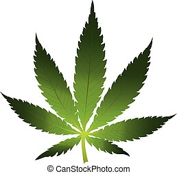 Cannabis leaf icon isolated - Vector cannabis leaf on white...