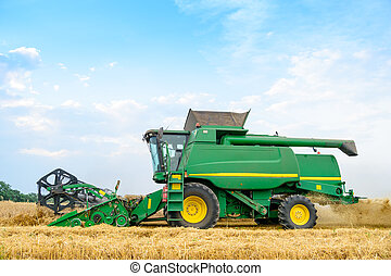 Combine Harvester Harvesting Wheat in the Field