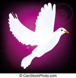 symbol of peace pigeon isolated on purple background