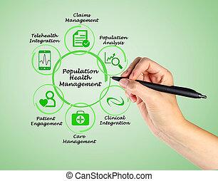 gerência, saúde, população