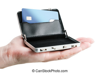 hand holds a small aluminum case with a credit card