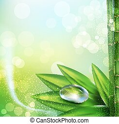 Vector green background with leaves and dew drops