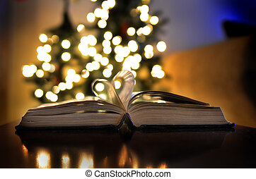 Christmas Time Lights Book Love Reading and Learning
