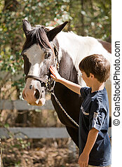 Boy Petting Horse - Little Boy Happy to be Petting a Horse