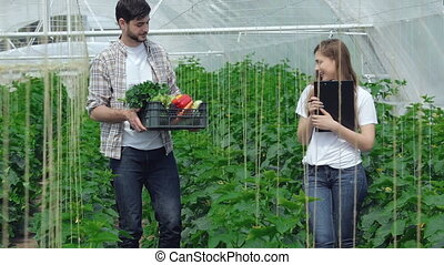 Guy gathering vegetables approached the girl agronomist....