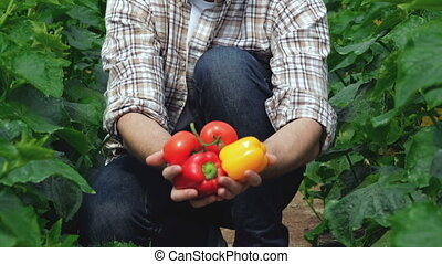 Guy sitting between beds raises vegetables directly to the...