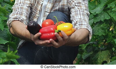 Guy demonstrates the organic vegetables directly to the...