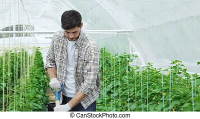 Guy worker in a greenhouse smiling directly at the camera...