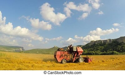 Combine Mowing Grains At Picturesque Place - DOLLY shot with...