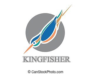 Diving Kingfisher - Vector illustration of diving Kingfisher