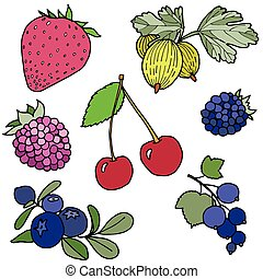 Berries - Vector illustration of the different cartoon...