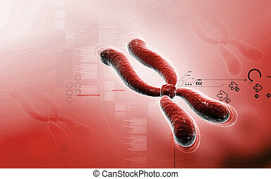 Chromosome - Digital illustration of chromosome in color...