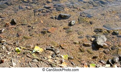 Shores of a lake with rock.