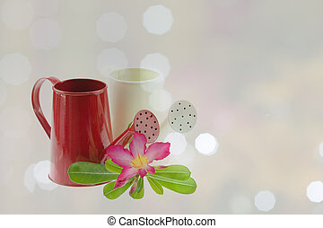 watering pot, two - Watering two beautiful bokeh in the...