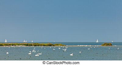 Panoramic image of the IJsselmeer lake in The Netherlands...