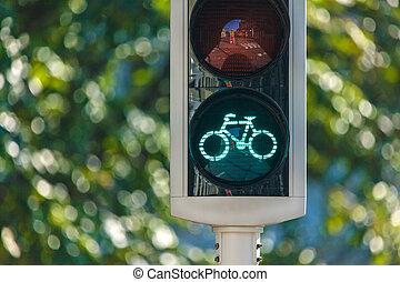 Bicycle traffic light in The Netherlands with trees in the...
