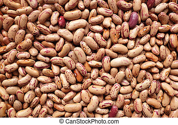 Borlotti beans, or cranberry beans background - Borlotti...