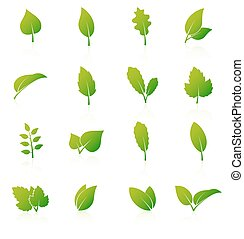 Set of green leaf icons on white background