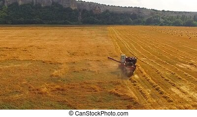 Harvesting Combine Working In The Field Of Wheat
