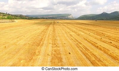 Golden Stubble Field At Picturesque Terrain - This is an...