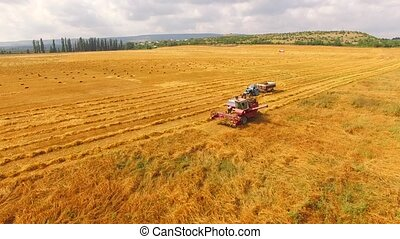 Agricultural Tractor And Combine Standing In Wheat Field -...