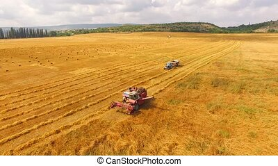Tractor Moving Towards Combine In Wheat Field