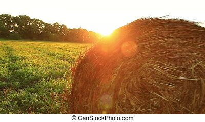 hay field - Hay is in the bale in a field at sunset in...