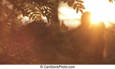 Branches of a mountain ash in the sunset HD