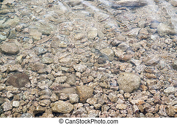 riparian detail - littoral detail with stones and shallow...