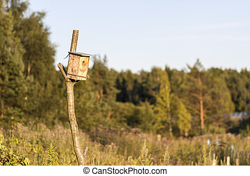 Man made birdhouse at sunset - Man made wooden birdhouse at...