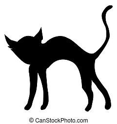 black cat - silhouette of black cat