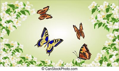 Butterflies Swallowtail and Vanessa - Animation of...