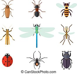Icon set of insects in flat style. Cockroach ant ladybug bee...