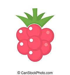 Raspberry icon. Vector illustration