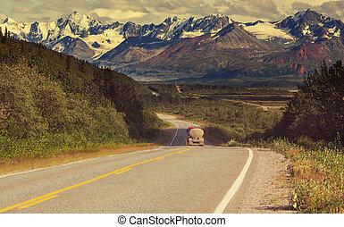 Road on Alaska - highway on Alaska