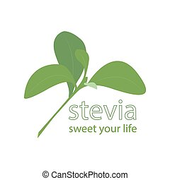 stevia - vector illustration of stevia leaf with sentence...