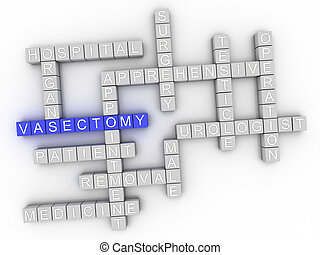 3d image Vasectomy issues concept word cloud background